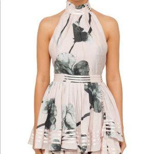 Aje Florentine Dress